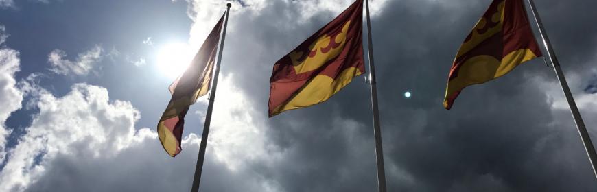 Kommunflaggor